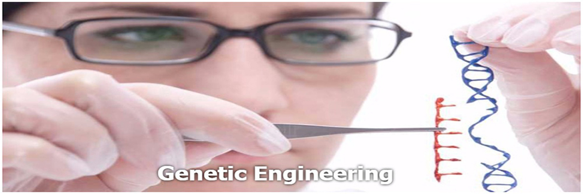 2.-genetic-engineering