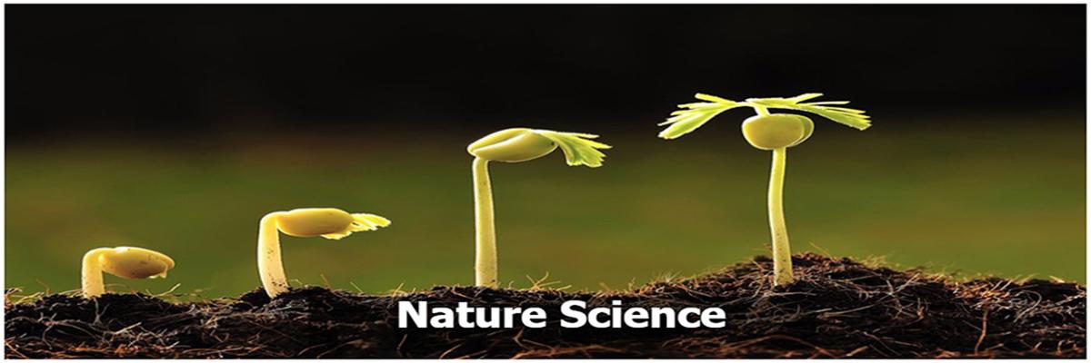 7.-nature